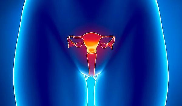 Воспалительные процессы на шейке матки