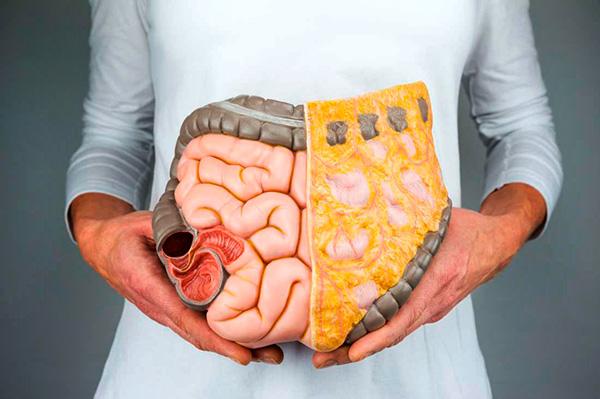 Рациональное питание помогает снизить количество жировой ткани