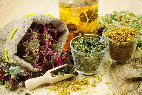 Сборы трав могут помочь уменьшить проявление симптомов СПКЯ, но не избавят от проблемы полностью