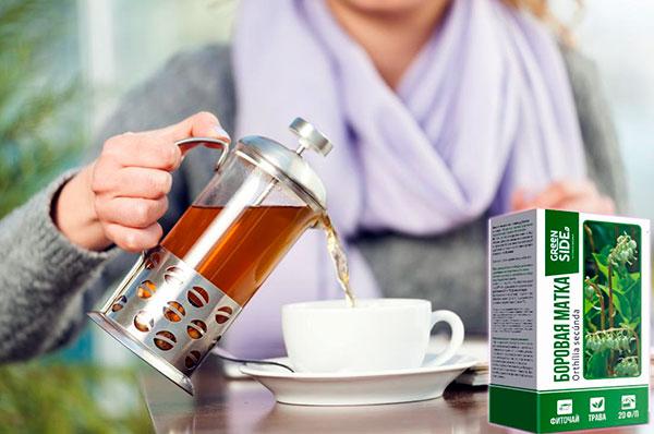 Чай из боровой матки имеет противовоспалительный эффект